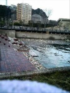 Trash in Yokosuka