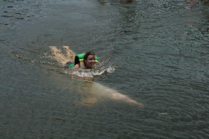 Swimming with Pink Dolphin in Thailand