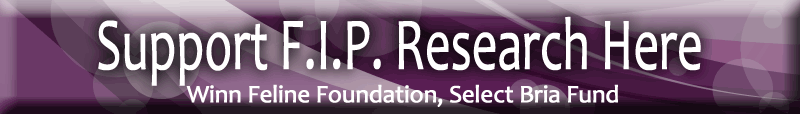 support FIP research