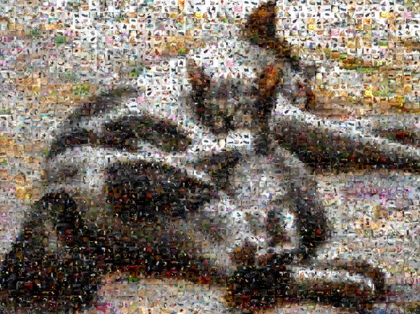 A Cat Mosaic of Runt and Mermista
